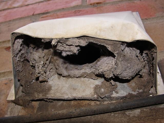 Clogged dryer vent hazard